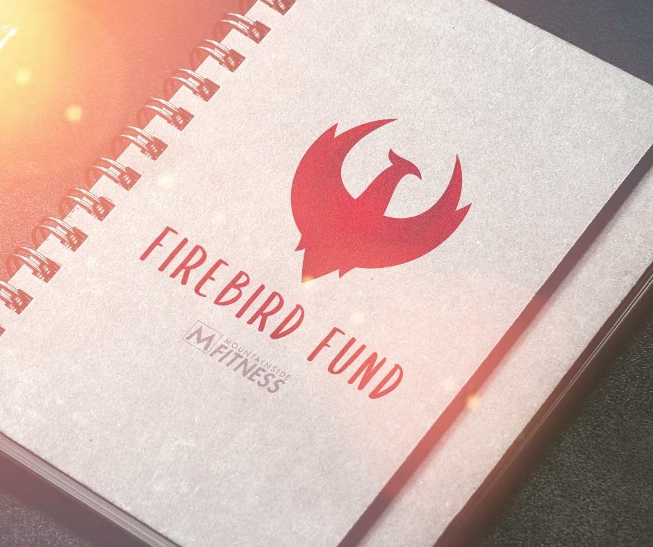 MSF Firebird FUnd